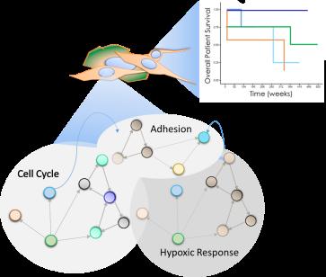 OverallSchematic
